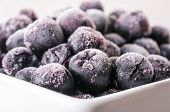 image of aronia  - Frozen Choke-berry closeup in white plate, Aronia, perfect antioxidant