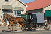 picture of mennonite  - An Amish carriage travels through a tourist town in Lancaster CountyPennsylvania - JPG