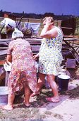 Vintage photo of overweight women working on farm (seventies)
