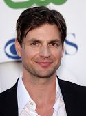 LOS ANGELES - AUG 03:  GALE HAROLD Summer TCA Party 2011 - CBS / SHOWTIME / CW   on August 03, 2011