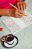 Grandma with Sudoku Game