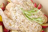 stock photo of dutch oven  - Chicken marinated with herbs - JPG