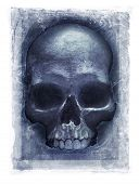 Grainy and gritty photomanipulation of a human skull