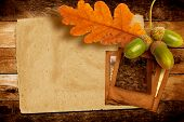 stock photo of acorn  - Old grunge slide with autumn oak leaves and acorns on the abstract background - JPG