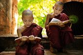 Southeast Asian Myanmar little monk reading book outside monastery, Buddhist teaching.