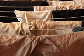 picture of underthings  - Laundry drying indoor in an urban apartement