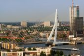 Erasmus Bridge From Euromast