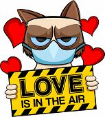 Grumpy cat love is in the air