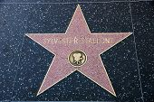 Sylvester Stallone Star On Hollywood Walk Of Fame