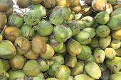 Heap Of Tender Coconut