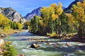 image of conifers  - mountain river and colourful mountains of Colorado during foliage season - JPG