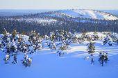 Winter In Finland.