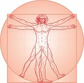 The Vitruvian man. In Red.
