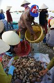 Seafood Market On Beach