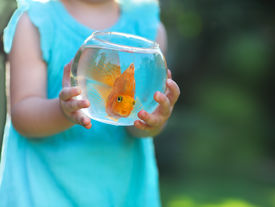 picture of fishbowl  - Little baby girl holding a fishbowl with a goldfish on a nature background - JPG
