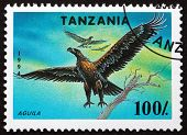 Postage Stamp Tanzania 1994 Osprey, Bird Of Prey