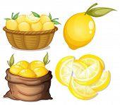 Illustration of a set of lemon