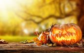 Concept of halloween pumpkins on wooden planks with blur background.