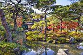 Kyoto, Japan fall foliage at Ginkaku-ji Temple of the Silver Pavilion.