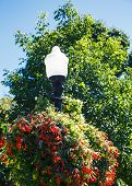 Streetlamp In Garden