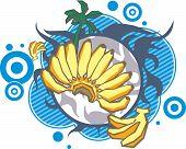 Banana palm decorative