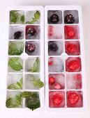 Ice cubes with forest berries, mint leaves in ice tray isolated on white