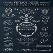 Calligraphic abstract elements set. Vector vintage frames ornament