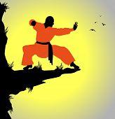 monaco shaolin