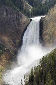 Famous Falls