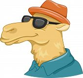 Illustration Featuring a Camel Wearing Sunglasses