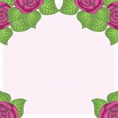 beautiful floral background of roses