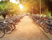 rows of bicycles on a school campus, china