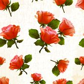 pattern rose flower old vector
