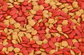 Dry Pet Food For Pattern And Background