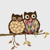 foto of fowl  - Pair of owls on branch in autumn - JPG