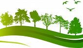 illustration with green trees and birds isolated on white background