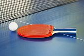 Paddle, Tennis Ball On Ping Pong Sport Table