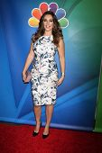 LOS ANGELES - DEC 16:  Kelly Brook at the NBCUniversal TCA Press Tour at the Huntington Langham Hotel on December 16, 2015 in Pasadena, CA