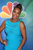 LOS ANGELES - DEC 16:  Vivica A Fox at the NBCUniversal TCA Press Tour at the Huntington Langham Hotel on December 16, 2015 in Pasadena, CA