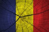 Chad Flag on wood background