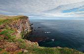 Cliff In Iceland - Latrabjarg