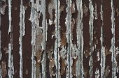 Paint Peeling Wooden Old Wall