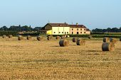 stock photo of farm landscape  - Country Landscape Near Ferrara  - JPG