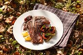picture of flank steak  - grilled steak - JPG