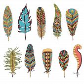 Set of ten abstract feathers