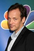 LOS ANGELES - JAN 16:  Peter Sarsgaard at the NBC TCA Winter 2015 at a The Langham Huntington Hotel on January 16, 2015 in Pasadena, CA