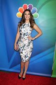 LOS ANGELES - DEC 16:  Kelly Brook at the NBCUniversal TCA Press Tour at the Huntington Langham Hotel on January 16, 2015 in Pasadena, CA