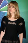 LOS ANGELES - JAN 16:  Melissa George at the NBC TCA Winter 2015 at a The Langham Huntington Hotel on January 16, 2015 in Pasadena, CA