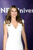 LOS ANGELES - JAN 15:  Elizabeth Hurley at the NBCUniversal Cable TCA Winter 2015 at a The Langham Huntington Hotel on January 15, 2015 in Pasadena, CA