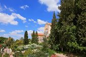 Israel.  The Trappist monastery - Latrun.  The magnificent building of the temple is surrounded by a lush garden